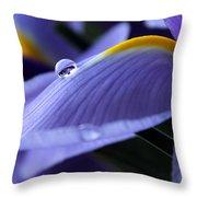 Spring Iris Throw Pillow