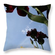 Spring Iris Skies Throw Pillow