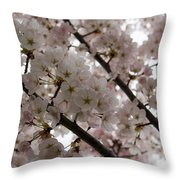Spring Is Beautiful - A Cloud Of Pastel Pink Blossoms Throw Pillow