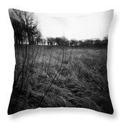 Spring Is Near Holga Photography Throw Pillow