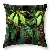 Spring Is Nigh Throw Pillow