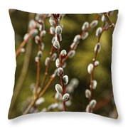 Spring Is Springing Throw Pillow by Thomas Young