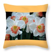 Spring Jonquils Throw Pillow