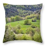 Spring Landscape Throw Pillow