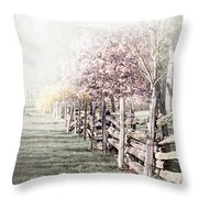 Spring Landscape With Fence Throw Pillow