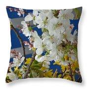 Spring Life In Still-life Throw Pillow