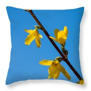 Spring Lights Throw Pillow