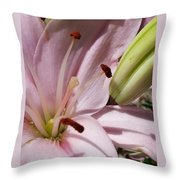Spring Lily Pink Throw Pillow