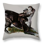 Spring Loaded Throw Pillow