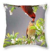 Cardinal Spring Love Throw Pillow
