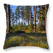 Spring Lupines In The Forest Throw Pillow