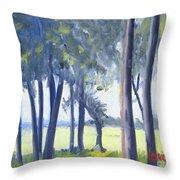 Spring Marsh From Deerfield Road Throw Pillow