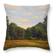 Spring Meadow At Sutter Buttes Throw Pillow