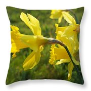 Spring Meadow Field Daffodil Flowers Throw Pillow