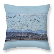 Spring Migration #1 Throw Pillow
