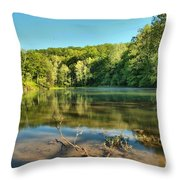Spring Mill Lake Throw Pillow