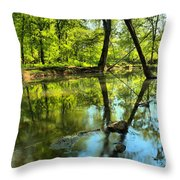 Spring Mill Reflections Throw Pillow