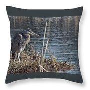 Spring Morning At The Marsh Throw Pillow