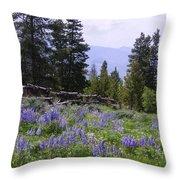 Spring Mountain Lupines Throw Pillow