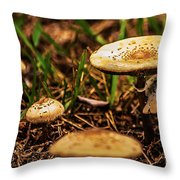 Spring Mushrooms Throw Pillow