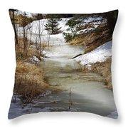 Spring Overflow Throw Pillow