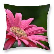 Spring Pink 2014 Throw Pillow