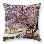 Spring Pink Throw Pillow