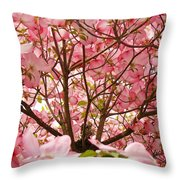 Spring Pink Dogwood Tree Blososms Art Prints Throw Pillow by Baslee Troutman