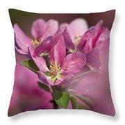 Spring Pink... Throw Pillow