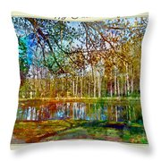 Spring Pond Photoart Father's Day Throw Pillow