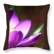 Spring Purple Throw Pillow