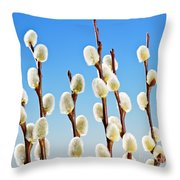 Spring Pussy Willows Throw Pillow by Elena Elisseeva