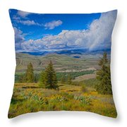 Spring Rain Across A Valley Throw Pillow
