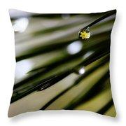 Spring Rain On The Pines Throw Pillow