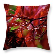 Spring Rain Throw Pillow by Rona Black
