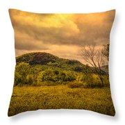 Spring Rain - White Mountains -maine Throw Pillow
