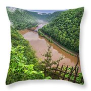 Spring Rains Comes To The New River Throw Pillow