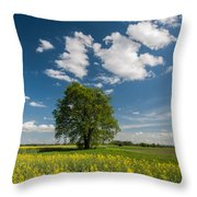Spring Rhapsody Throw Pillow by Davorin Mance