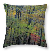 Spring Riot Throw Pillow