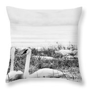 Spring Romance Throw Pillow