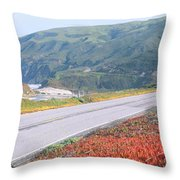 Spring, Route 1, California Coast Throw Pillow