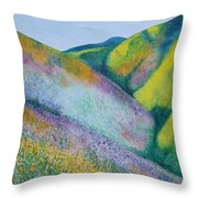 Valley Of Flowers Throw Pillow
