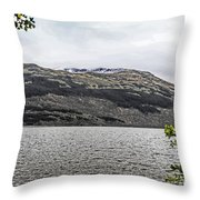 Spring Snow In The Highlands Throw Pillow
