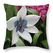 Spring Star Throw Pillow