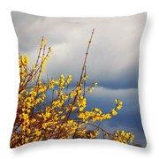 Spring Storm Throw Pillow
