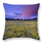 Spring Storm At Andalucia Throw Pillow