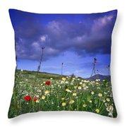 Spring Sunset Windy Days Throw Pillow