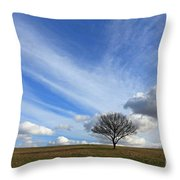 Spring Sunshine Epsom Downs Surrey Throw Pillow
