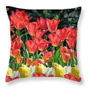 Spring Surprise  Throw Pillow