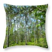 Spring Swamp Throw Pillow